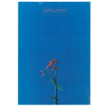 JOANNA NEWSOM/& The Ys Street Band E.P.(12inch EP) (2007) (ジョアンナ・ニューサム/USA)
