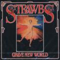 THE STRAWBS/Grave New World (1972/5th) (ストローブス/UK)