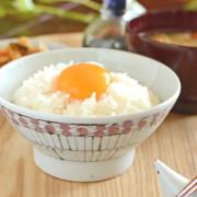 和食器・砥部焼 花垣文の古砥部茶碗(小)
