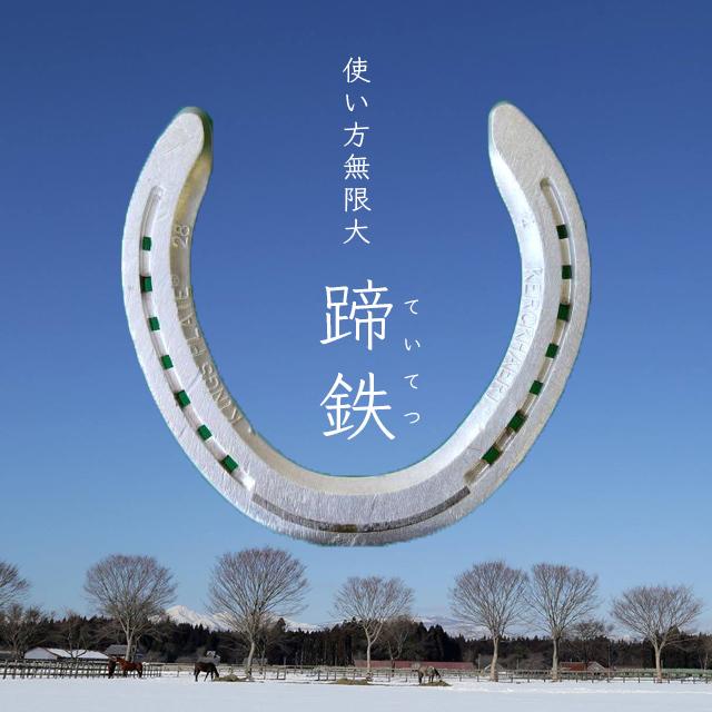 蹄鉄(ていてつ)