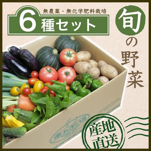 旬の野菜6種セット