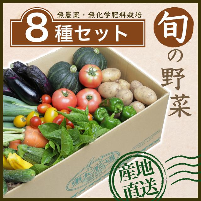 旬の野菜8種セット