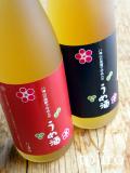 八海山 梅酒 720ml・2本セット 化粧箱入