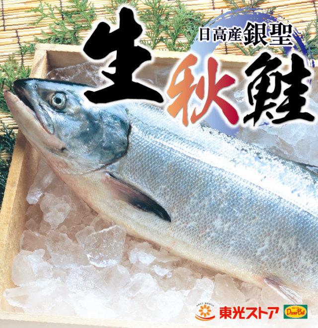日高産 生秋鮭 銀聖(メス) 生筋子入 約3.5Kg