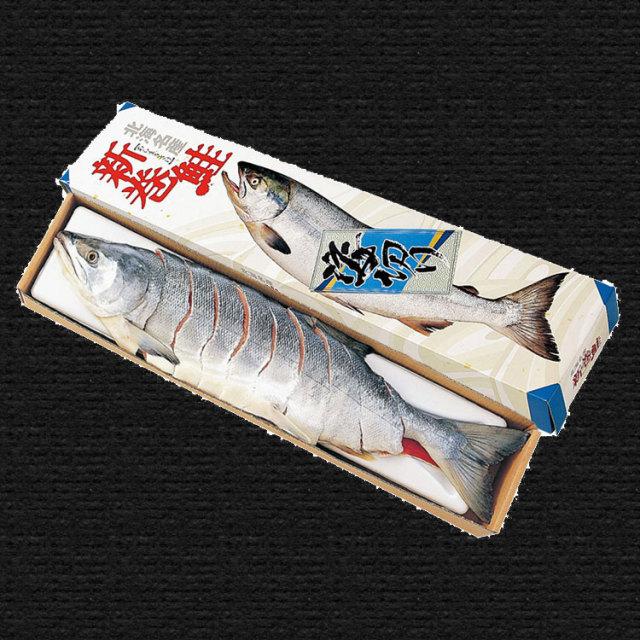 原料原産地名:北海道 新巻鮭 姿切身(オス) 約3.0Kg【003】