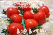 芸能人ブログでも紹介されました!ハート型の可愛いやつ!フルーツトマト界のお姫様!トマトベリー!量り売り!