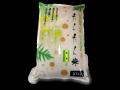 たんたん米(玄米10kg)【送料無料】