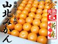 山北みかん640新春