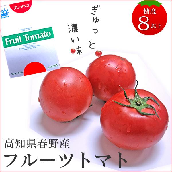 春野産フルーツトマト