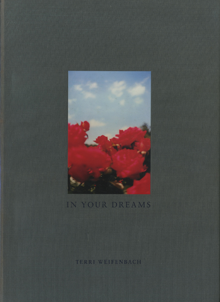 Terri Weifenbach: In Your Dreams