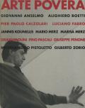 アルテ・ポーヴェラ/貧しい芸術 展 図録
