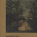 Quadrat-Print: Buckminster Fuller