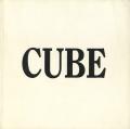 SOL LEWITT: A CUBE