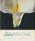 メイプルソープの花