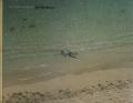 Richard Misrach: On The Beach