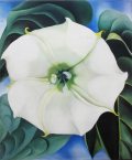 オキーフ画集 花