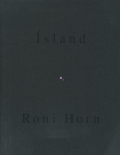 Roni Horn: To Place  vol.4/ Pooling Waters  no.2