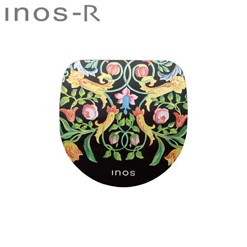 イノスR(inos-R)IN-R06