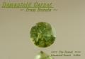 【わけありルース】淡い若草色の中に虹色に光!ロシア産デマントイドガーネット0.2ct.UP 3.6mmラウンドシェイプ