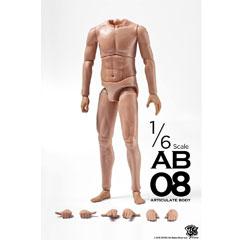 【ZC World】Articulate Body アーティキュレイト・ボディ AB-08 1/6スケール 男性ボディ素体