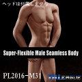 【TBLeague】male seamless body PL2016-M31 ファイセン 1/6スケール シームレス男性ボディ(ヘッドなし)