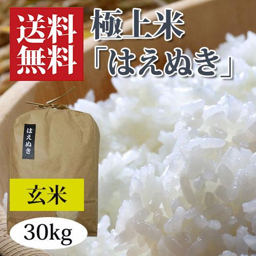 うまいず米はえぬき