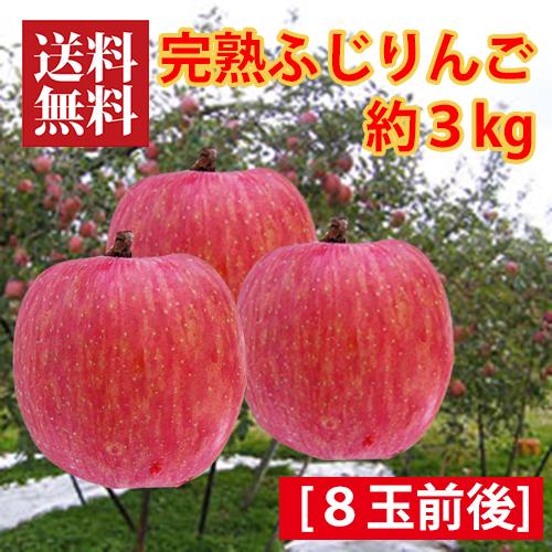 大沼果樹園の完熟ふじりんご