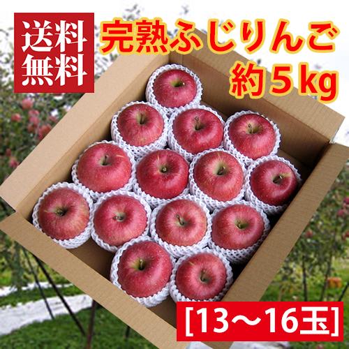 完熟ふじりんご約5kg[13~16玉]