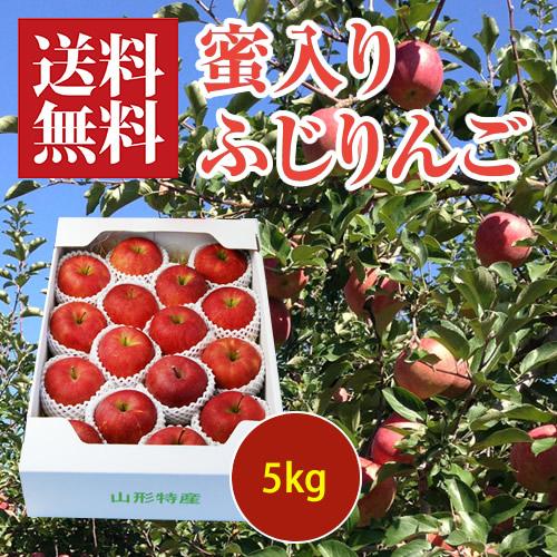 蜜入りふじりんご5kg[化粧箱入]