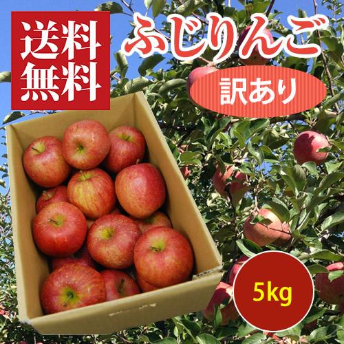 旬果耕房の訳ありふじりんご5kg