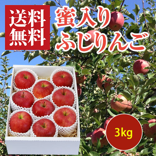 蜜入りふじりんご3kg[化粧箱入]