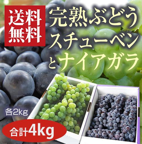 完熟ぶどうナイアガラとスチューベン各2kg