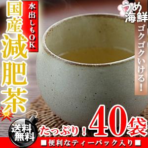 厳選!8種類ブレンド♪国産 減肥茶 ティーバッグ 40袋(20袋×2個入り) 水出し もできます【送料無料】【げんぴ茶】【健康茶】※代金引換不可