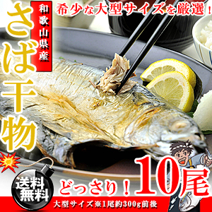 希少な大型サイズ♪和歌山県産 真さば干物 10枚【送料無料】【鯖】【さば】【サバ】【ギフト】※代金引換不可