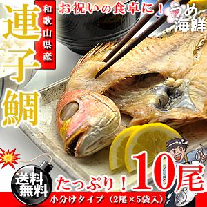 お祝いの食卓に♪ 和歌山県産 連子鯛 干物 10枚(2枚×5袋)【送料無料】【鯛】【れんこ】※代金引換不可【ギフト】