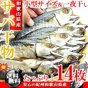 和歌山県産 さば干物 (一夜干し) 14枚 【送料無料】【サバ干物】【サバ】【ギフト】