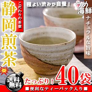 爽やかな香り♪静岡県産 煎茶 ティーバッグ 40袋(20袋×2個)【送料無料】【静岡茶】【日本茶】※代金引換不可