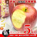 青森県産 ふじりんご お徳用 5kg