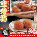 紀州 南高梅 宝寿梅 12粒 個包装(大粒サイズ4L以上 A級品) 梅干し【ギフト】送料無料