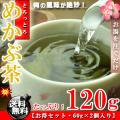 めかぶ茶  梅味 お徳用 120g(60g×2個入り)【送料無料】