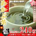 めかぶ茶  梅味 お徳用 240g(60g×4個入り)【送料無料】