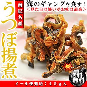 和歌山県産 珍味 うつぼ 揚げ煮 45g【送料無料】【うつぼ】【うつぼの揚げ煮】