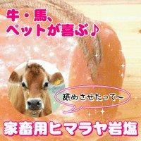 【動物】家畜用ヒマラヤ岩塩2~3kg 4個セット【牛・馬・羊】