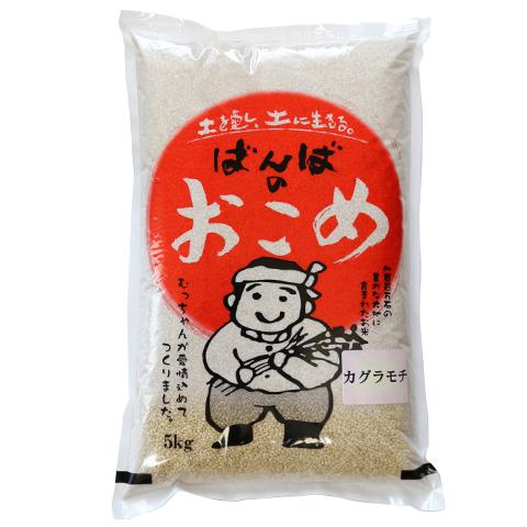 カグラモチ(特別栽培米_) 玄米5kg