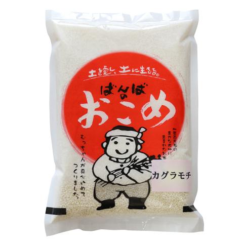 カグラモチ(特別栽培米_) 白米1.5kg