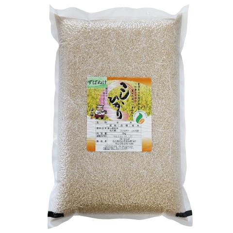 ずばぬけ(コシヒカリ) 玄米5kg
