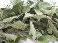 オーガニック レモンバーベナ 100g  トルコ産