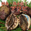 【アワビ通販】海女採りアワビ約250g(1個)