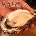 【牡蠣通販】岩牡蠣(大・約350g〜400g)