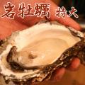 【牡蠣通販】岩牡蠣(特大・約400g〜500g)